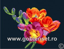 Фрезия (Freesias)