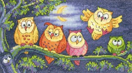 Совы (A Hoot of Owls)